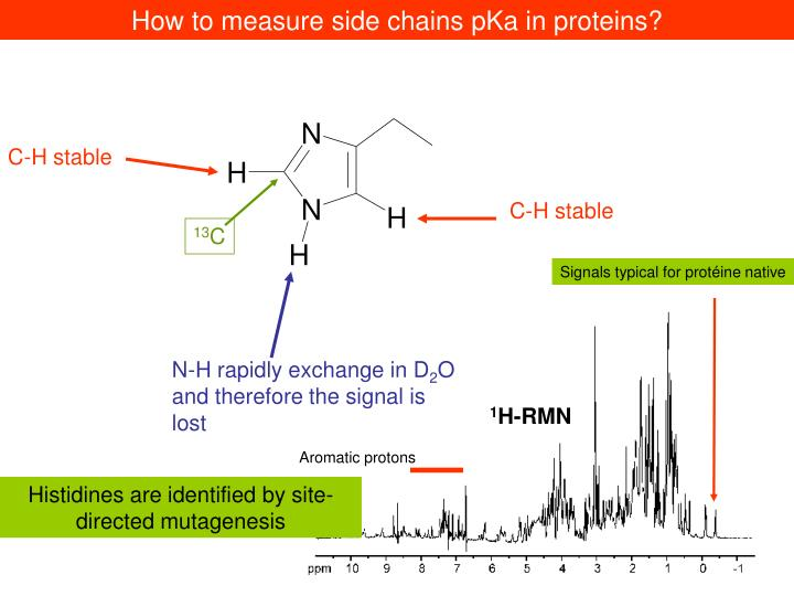 How to measure side chains pKa in proteins?