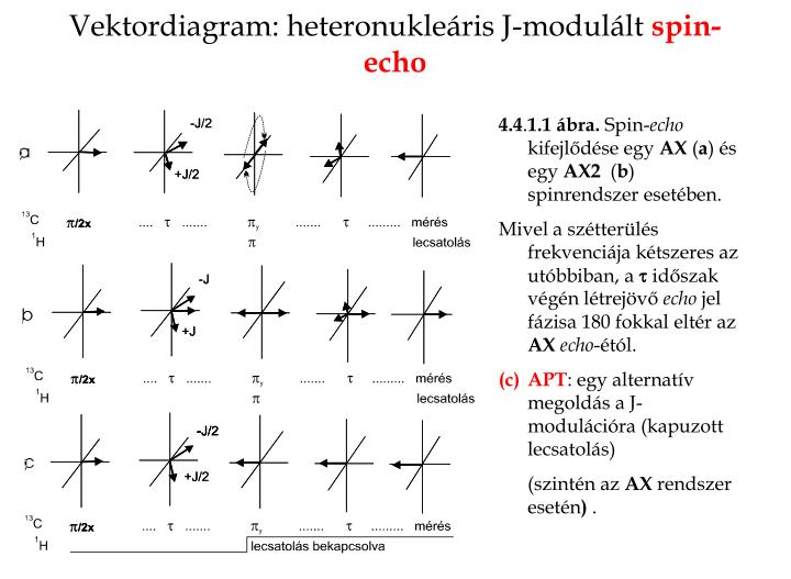 Vektordiagram: heteronukleáris J-modulált