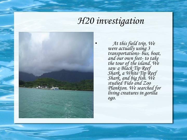 H20 investigation