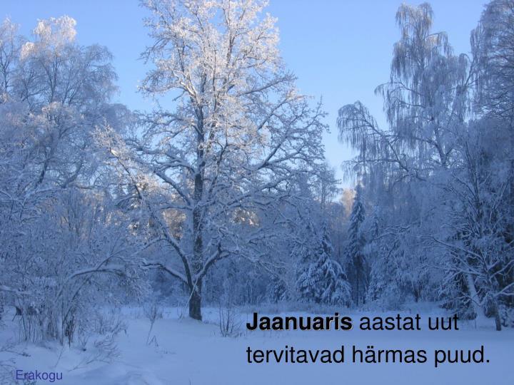 Jaanuaris