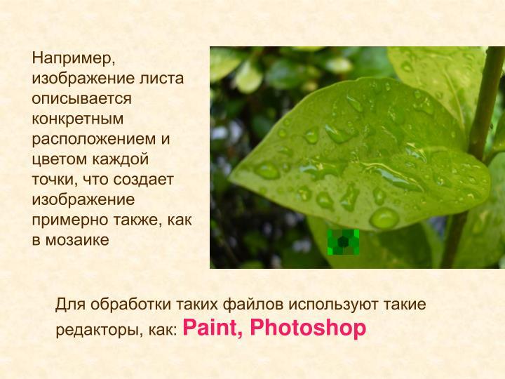 Например, изображение листа описывается конкретным расположением и цветом каждой точки, что создает изображение примерно также, как в мозаике