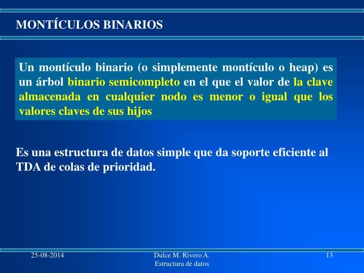MONTÍCULOS BINARIOS