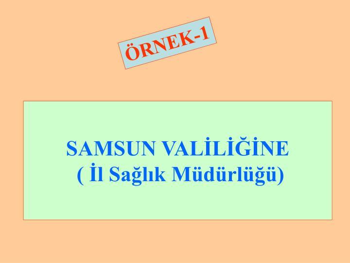 SAMSUN VALİLİĞİNE