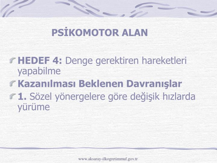 PSİKOMOTOR ALAN