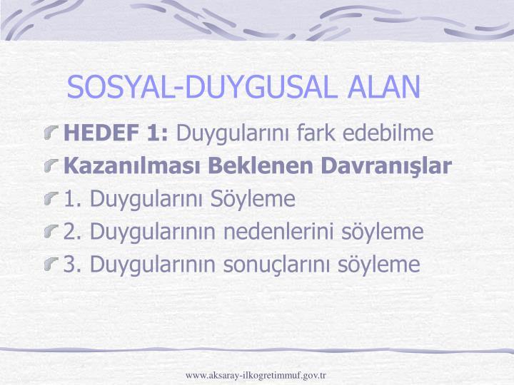 SOSYAL-DUYGUSAL ALAN