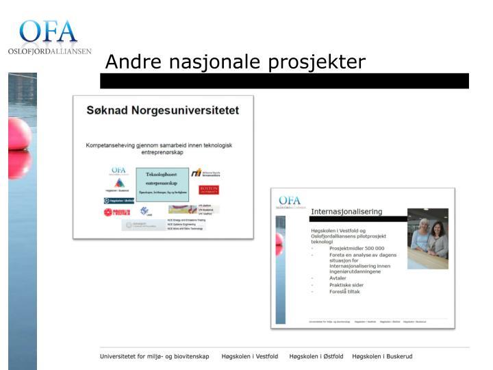 Andre nasjonale prosjekter