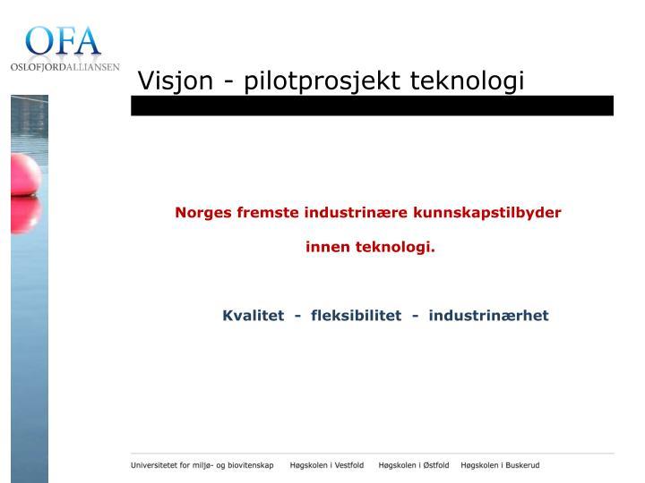 Visjon - pilotprosjekt teknologi