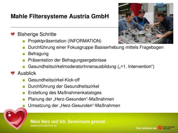 Mahle Filtersysteme Austria GmbH
