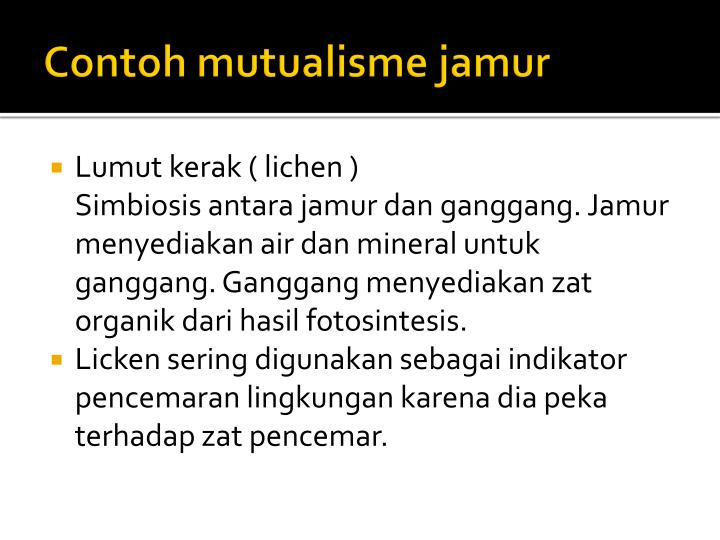 Contoh mutualisme jamur