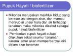 pupuk hayati biofertilizer
