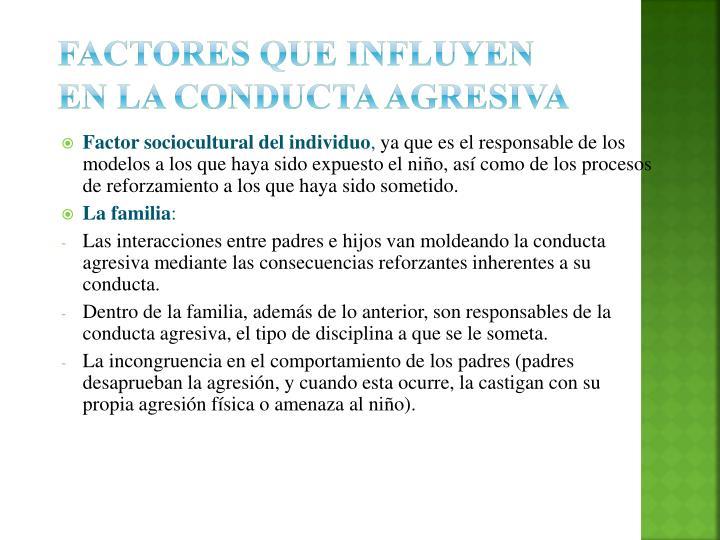 Factores que influyen en la conducta agresiva