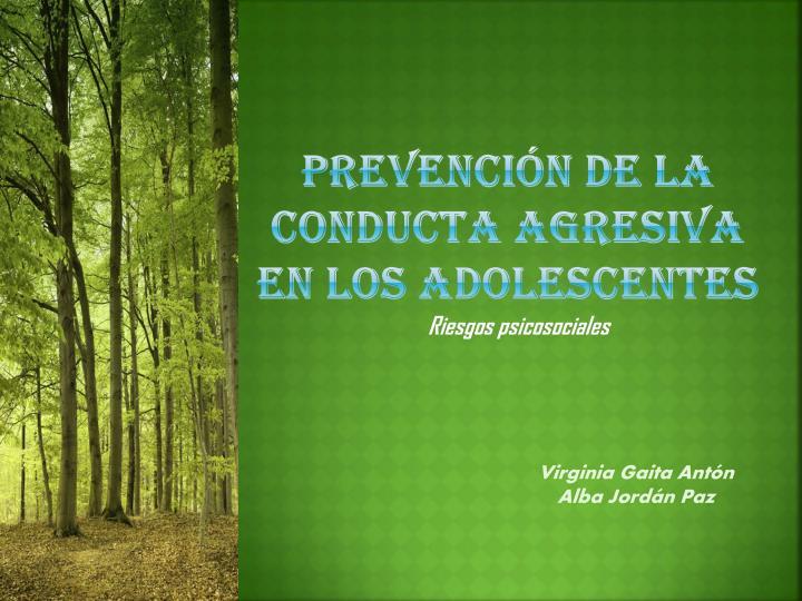 prevención de la conducta agresiva en los adolescentes