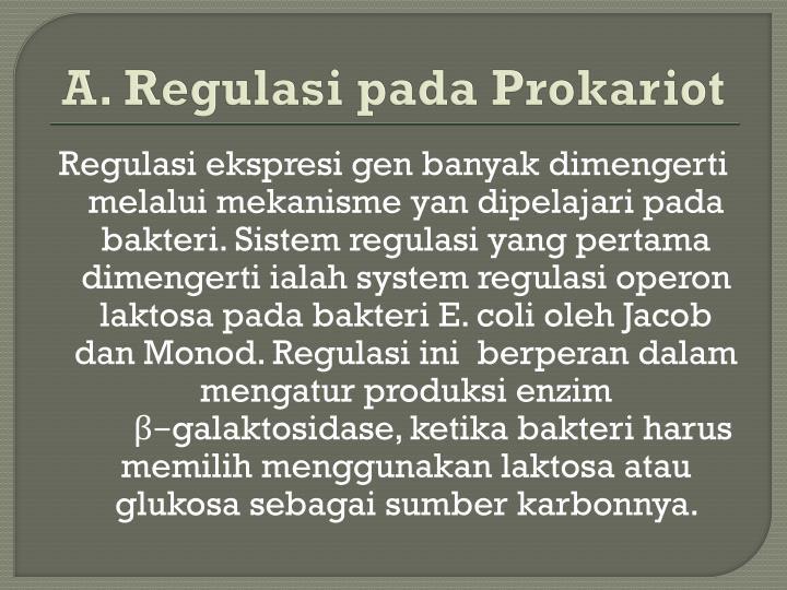 A. Regulasi pada Prokariot