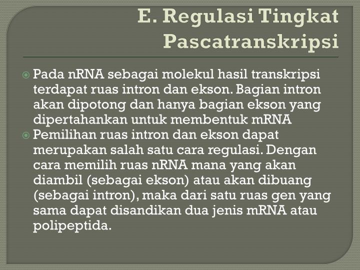 E. Regulasi Tingkat Pascatranskripsi
