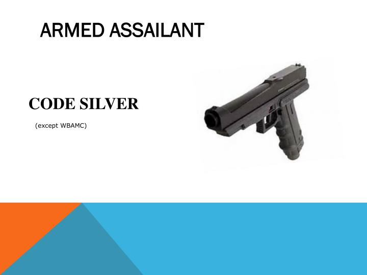 ARMED ASSAILANT