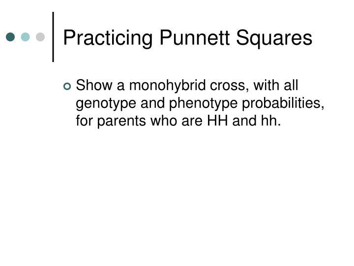 Practicing Punnett Squares
