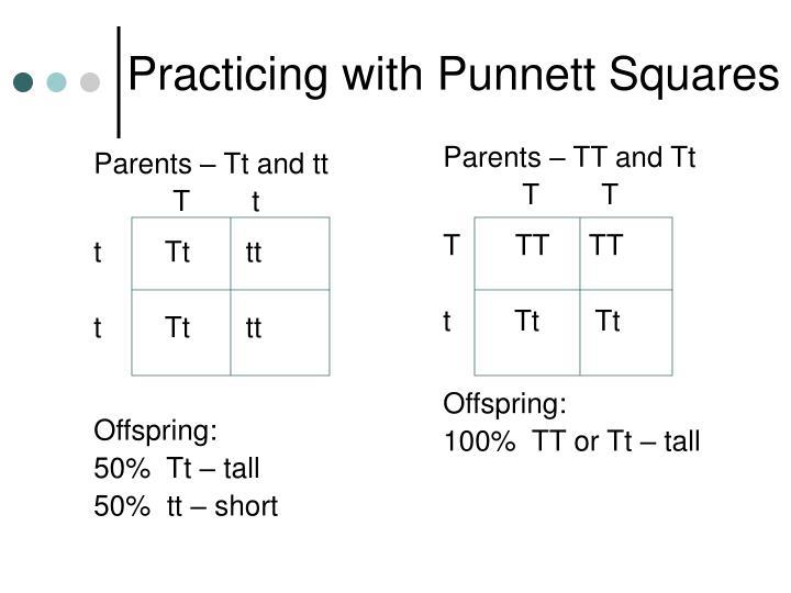 Parents – Tt and tt