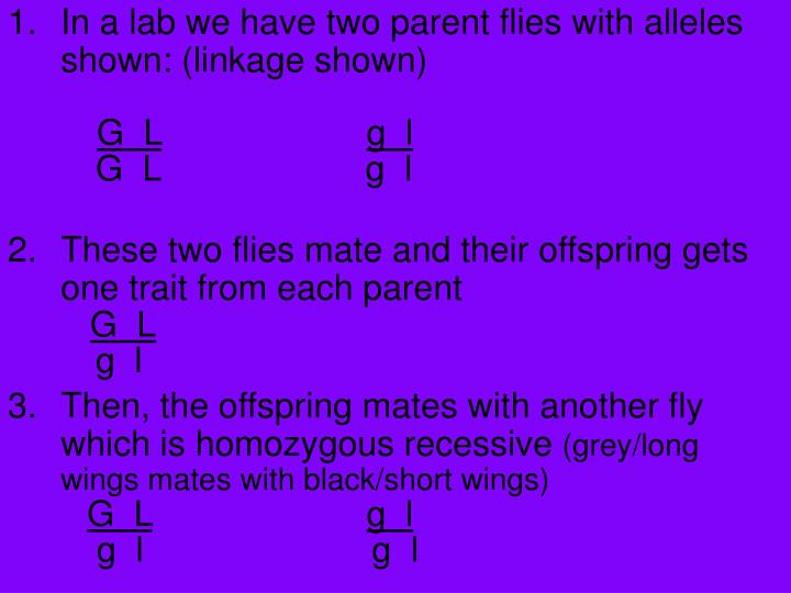 In a lab we have two parent flies with alleles shown: (linkage shown)