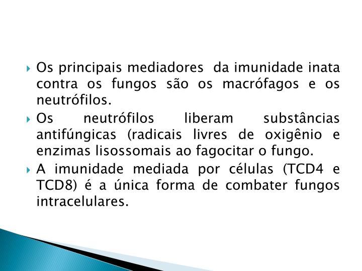 Os principais mediadores  da imunidade inata contra os fungos são os macrófagos e os neutrófilos.