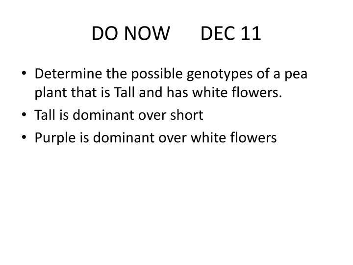 DO NOW      DEC 11