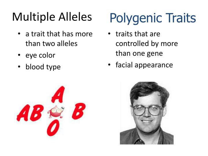 a trait that has more than two alleles
