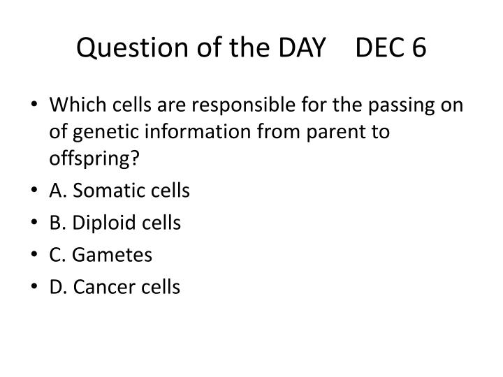 Question of the day dec 6