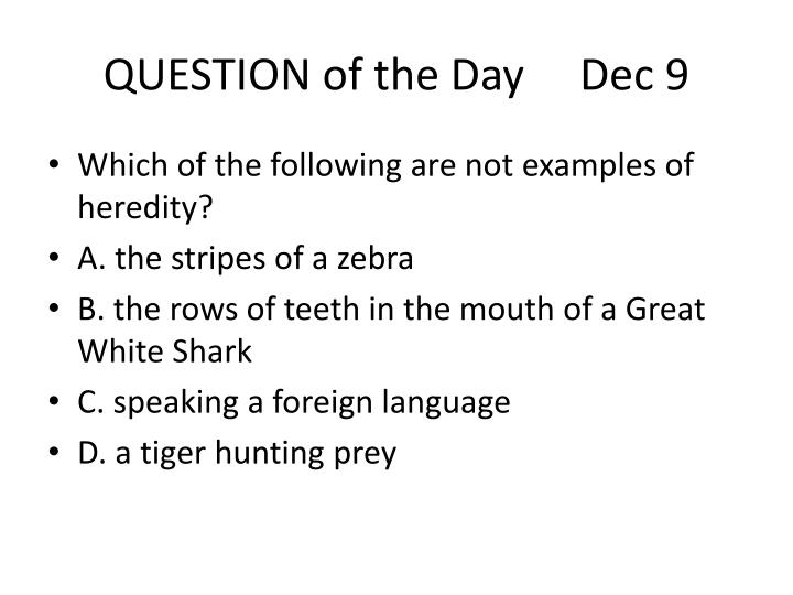 QUESTION of the Day     Dec 9