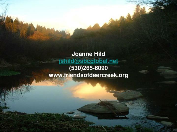 Joanne Hild