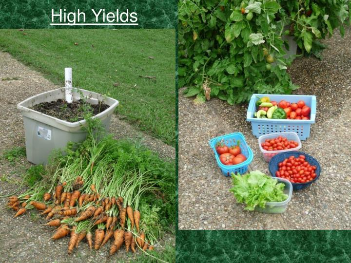 High Yields
