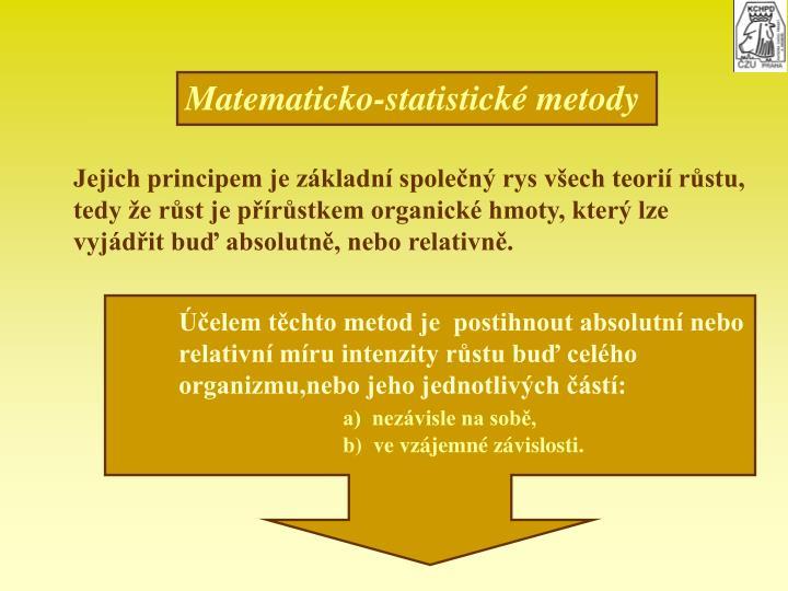 Matematicko-statistick metody