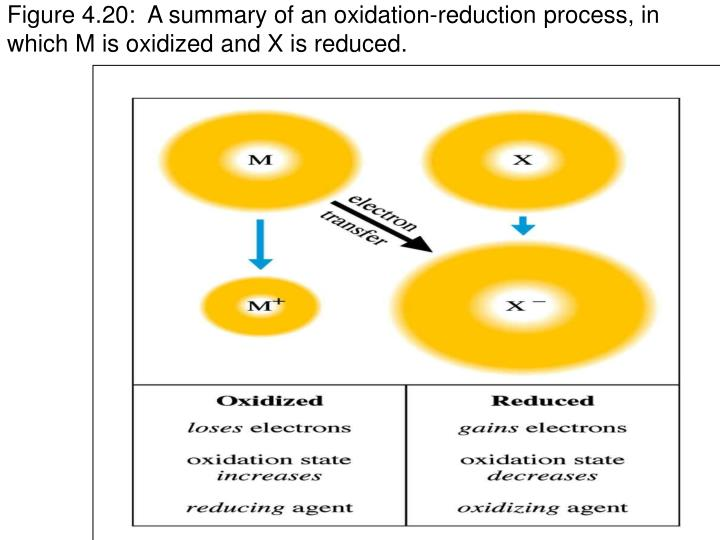 Figure 4.20:  A summary of an oxidation-reduction process, in which M is oxidized and X is reduced.
