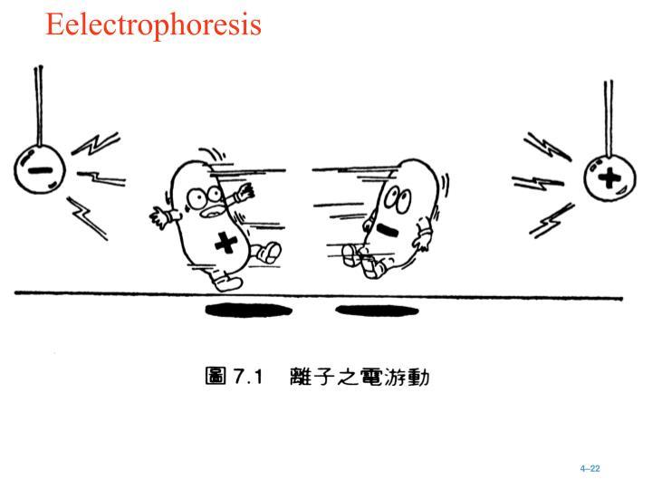 Eelectrophoresis