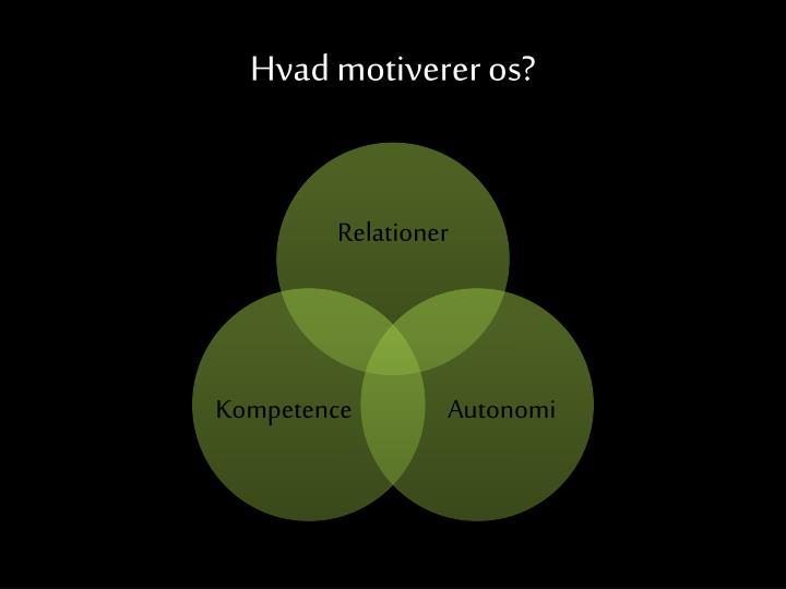 Hvad motiverer os?