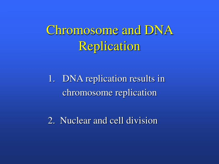Chromosome and DNA Replication
