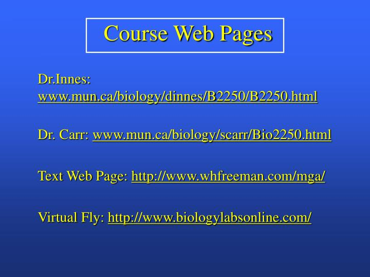 Course web pages
