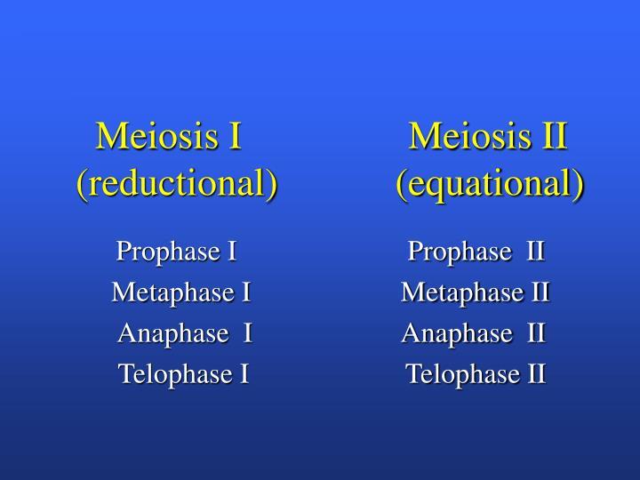Meiosis I                 Meiosis II