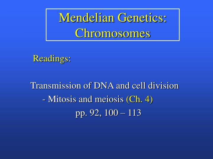 Mendelian Genetics: