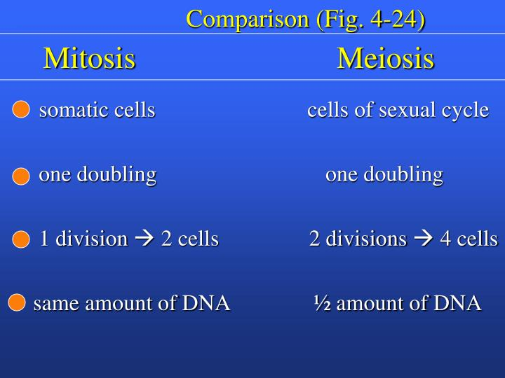 Comparison (Fig. 4-24)