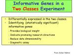 informative genes in a two classes experiment