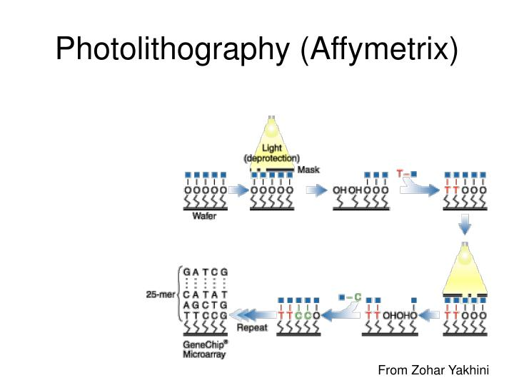 Photolithography (Affymetrix)