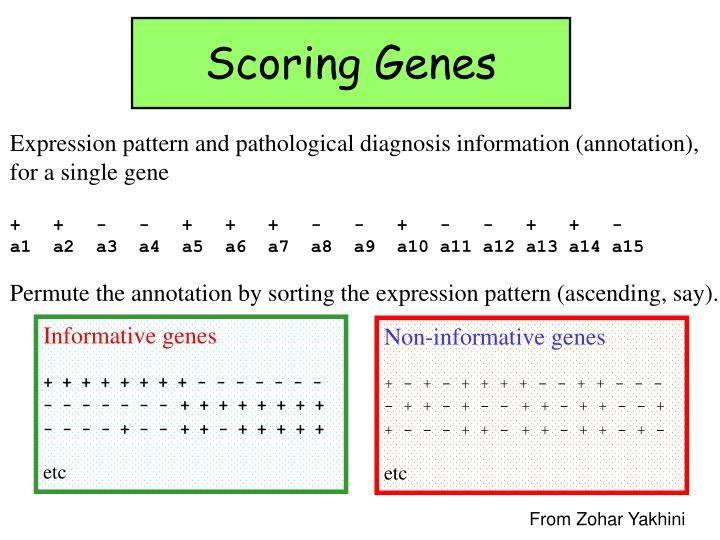 Informative genes