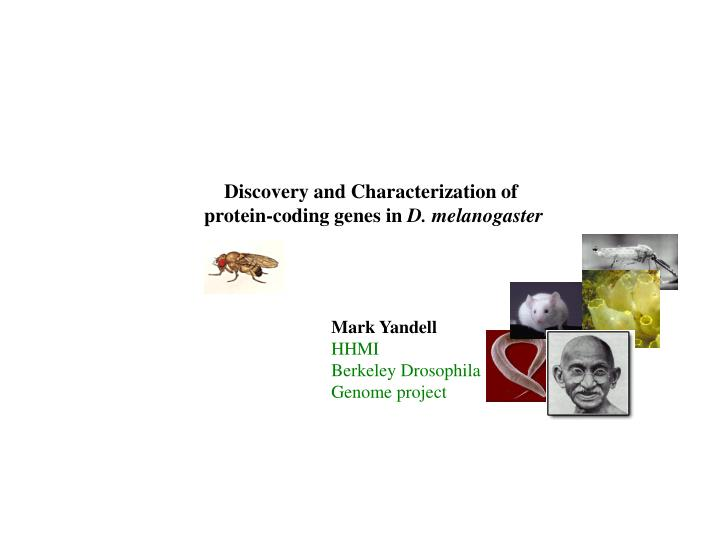Discovery and Characterization of