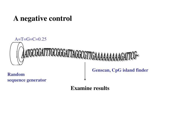 A negative control