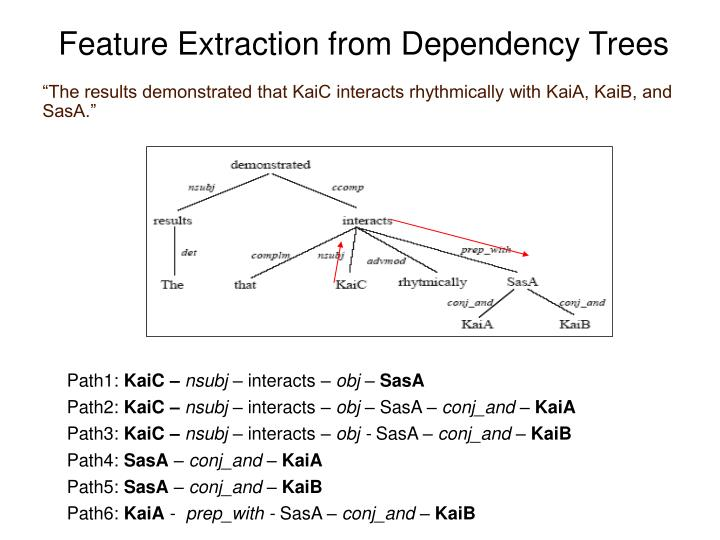 Feature Extraction from Dependency Trees