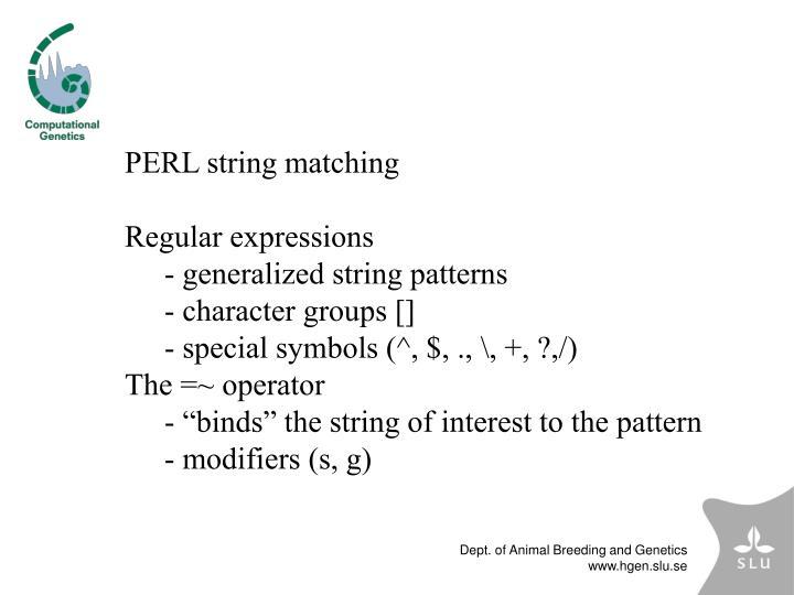 PERL string matching
