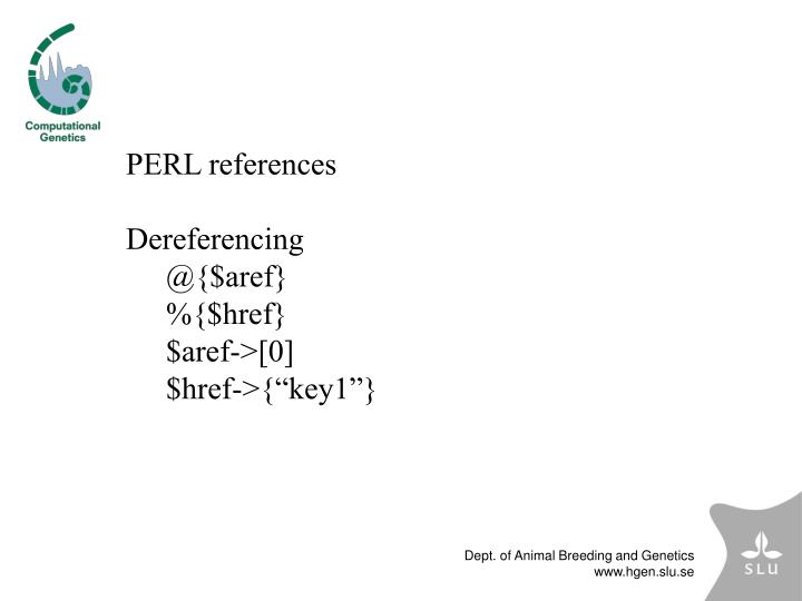 PERL references