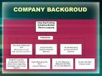 company backgroud1