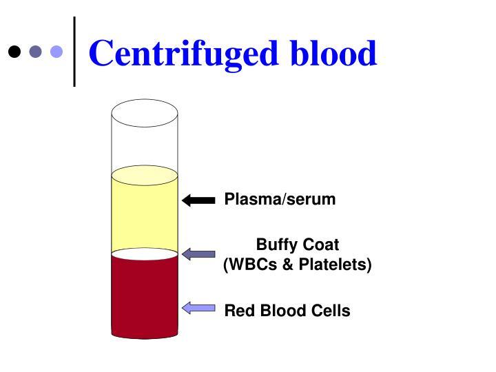 Centrifuged blood