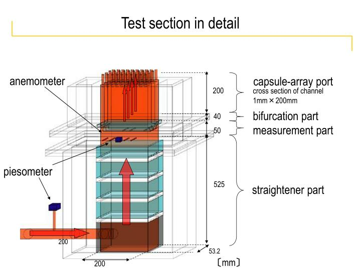 Test section in detail