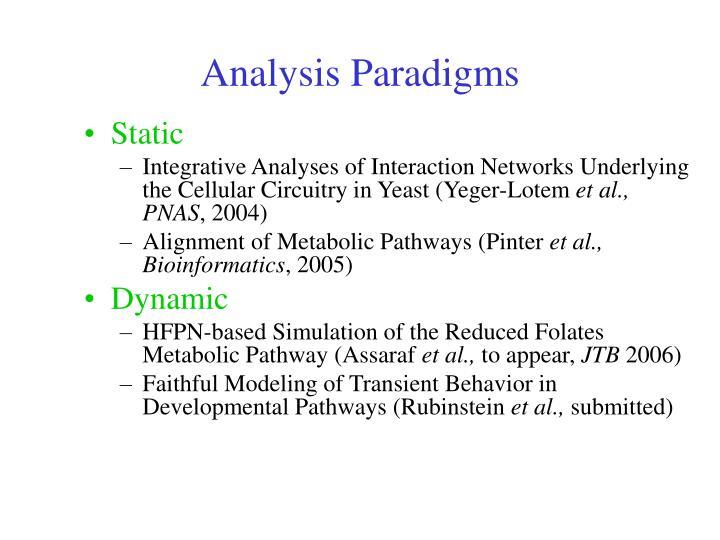 Analysis Paradigms